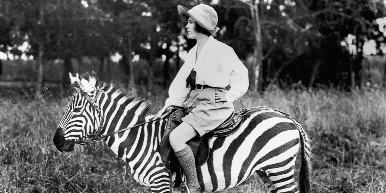 シマウマに乗る女性(1923年撮影)