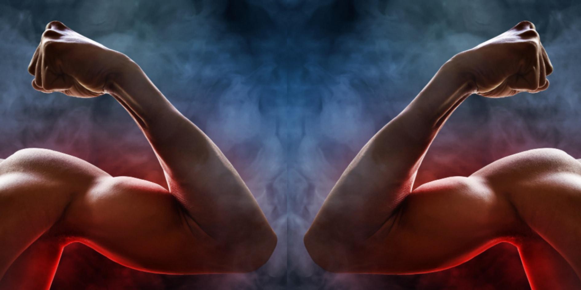 筋トレなどの無酸素運動が脂肪燃焼を引き起こす仕組みが判明! 筋細胞の破片が脂肪細胞にカツを入れていた