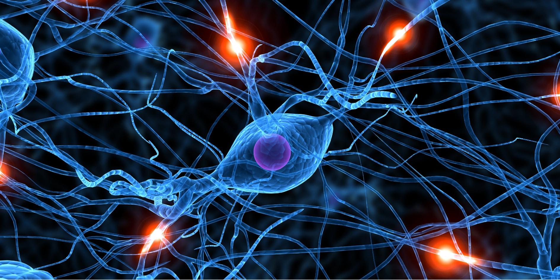 短期記憶を長期記憶にするには「習慣の壁」を超える必要があると判明