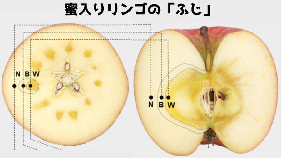 「ふじ」のような品種は多くの蜜の部分を含んでいる人気品種である