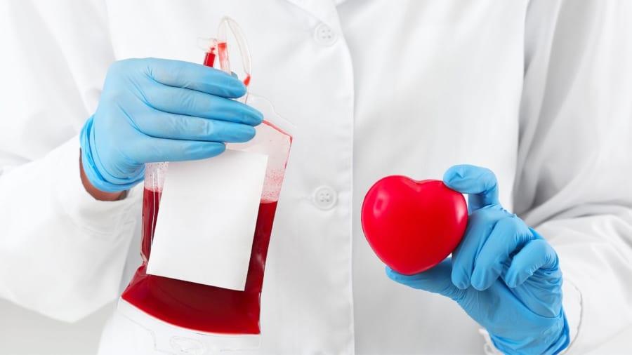 医療が進んでも停滞していた止血技術をフジツボが切り開く