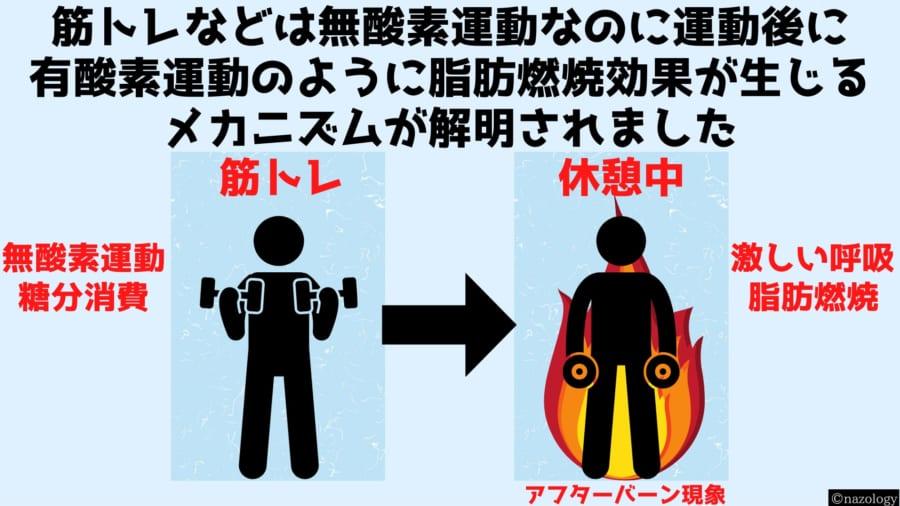 無酸素運動が酸素を使った脂肪燃焼を引き起こしている