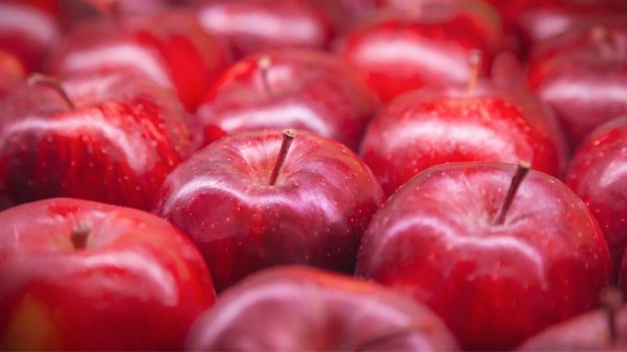 世界初「リンゴの蜜」ができる仕組みを細胞レベルで明らかに