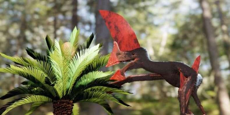 化石から復元された翼竜「トゥパンダクティルス」のイメージ