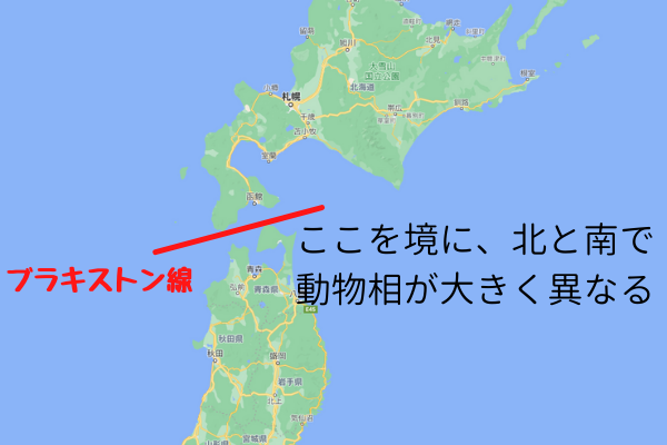 津軽海峡を挟んで日本では動物相が大きく異なる。このラインをブラキストン線と呼ぶ。