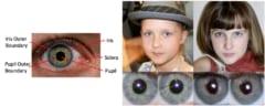 実在の自分の画像は瞳孔が真円だが、偽物は瞳孔が歪んだ形になる。