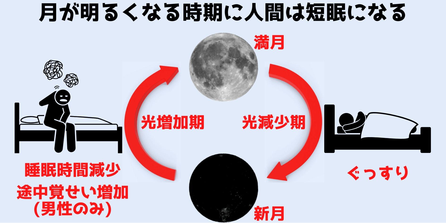 大規模研究により「月明かりが増す時期」に人間は短眠になると判明!