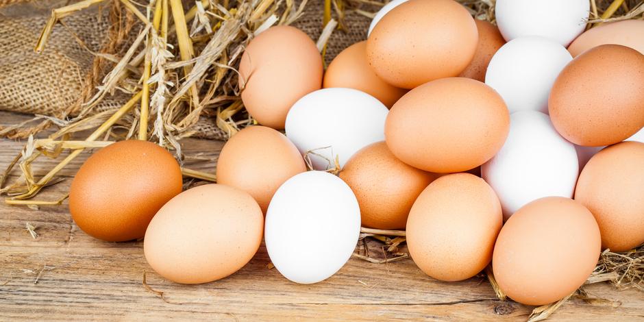 「茶色い卵は栄養価が高い」は本当か?