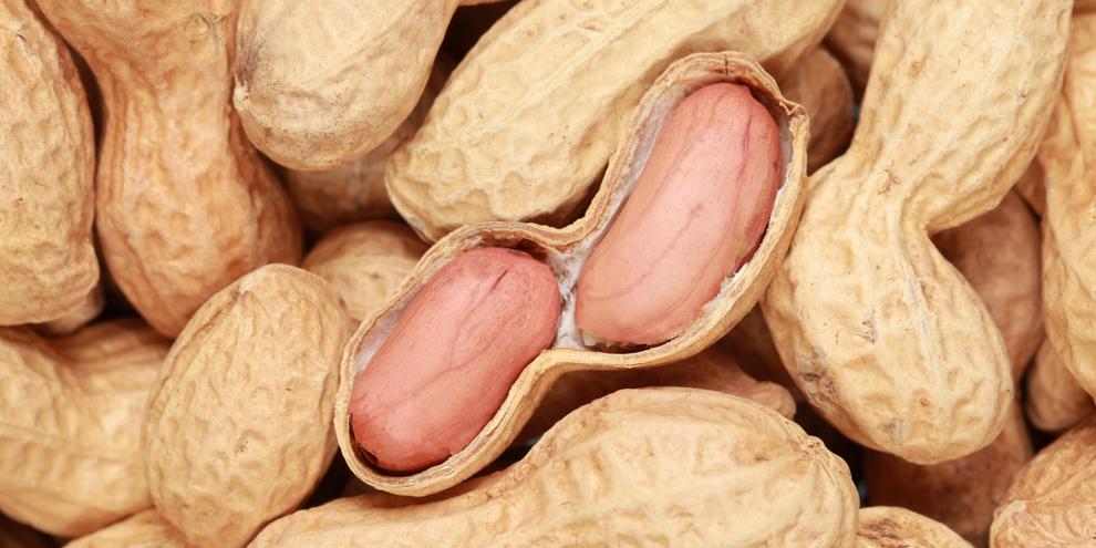 日本人はピーナッツを食べることで脳卒中・心疾患を予防できる