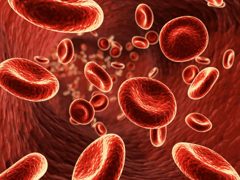血中の代謝物の濃度を測定