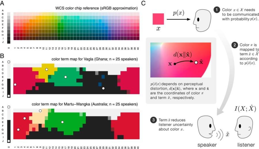 330色の色のチップ(A)から言語が表す基本的な6つの色を選んでもらった場合、どの言語でもほぼ一致した