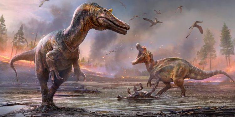 英・ワイト島でスピノサウルス科の新種を2種同時に発見!