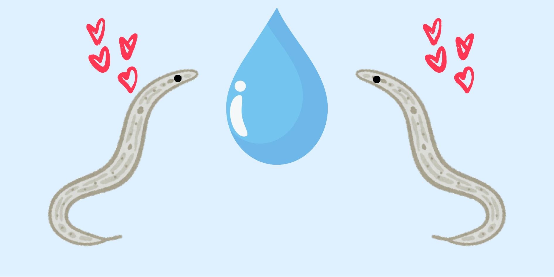 例のニョロニョロが尿の匂いで「すい臓がん」の早期発見も可能と判明!