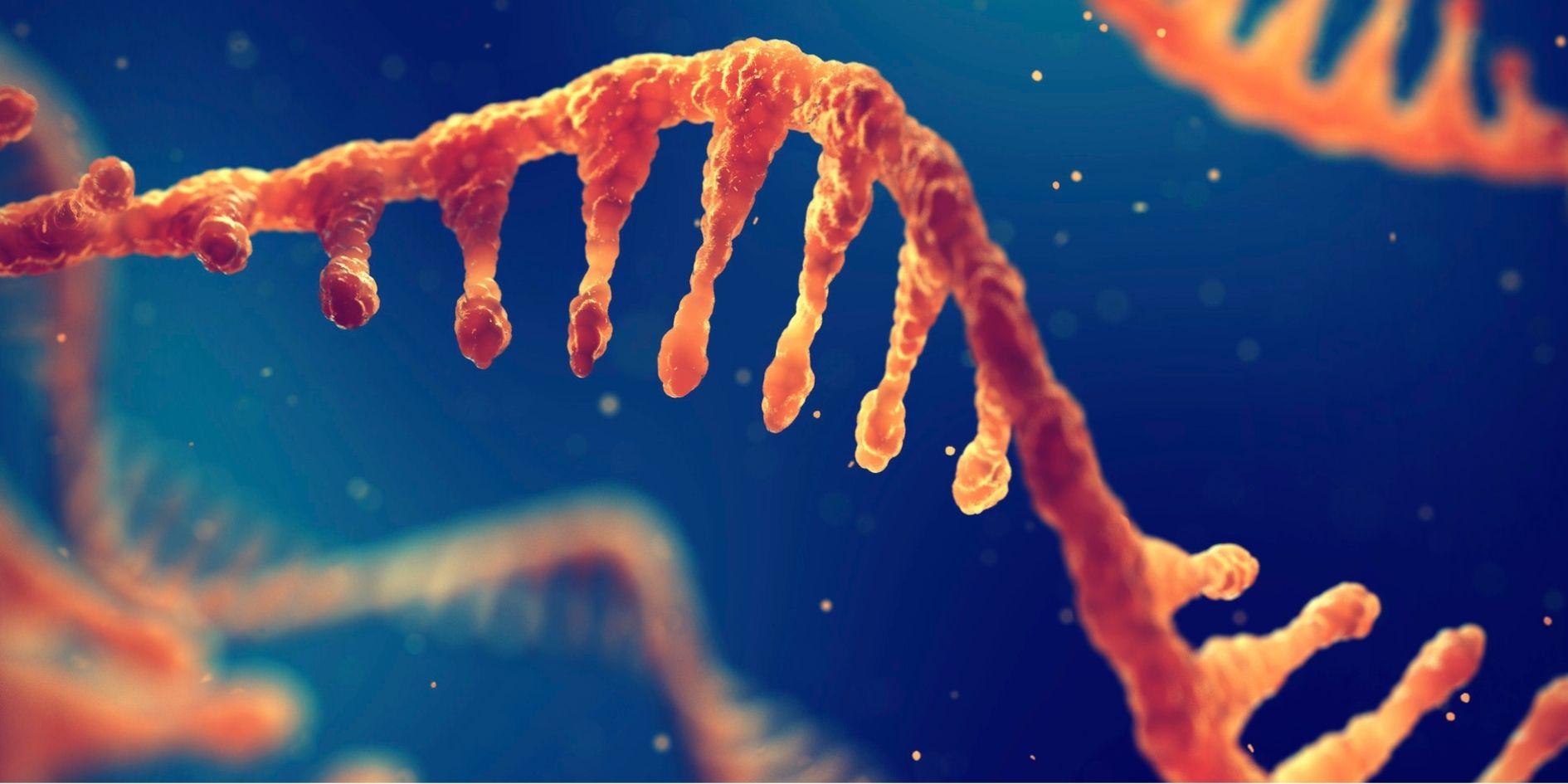 mRNA技術でマウスの20匹中19匹で「がん細胞を完全消滅」させたと発表! 臨床試験も開始!