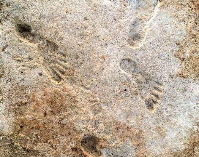 北米最古となる約2万年前の「人類の足跡」を発見!