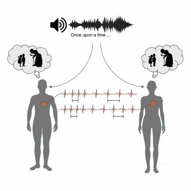 人は同じ物語のオーディオを聞くと心拍数の変化が同期する