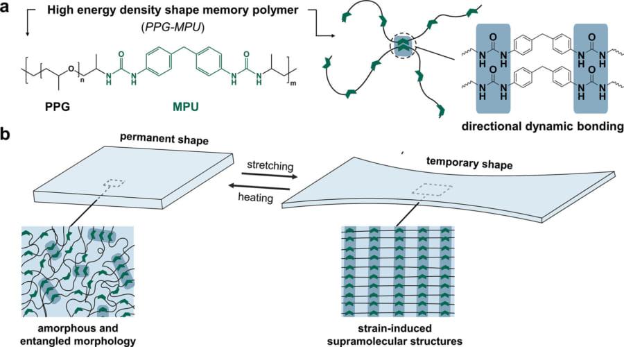 形状記憶ポリマーは最初無秩序な状態で散らばっているが、引っ張ることで整列する。これが開放されると再び無秩序な状態に戻り多量のエネルギーが放出される。