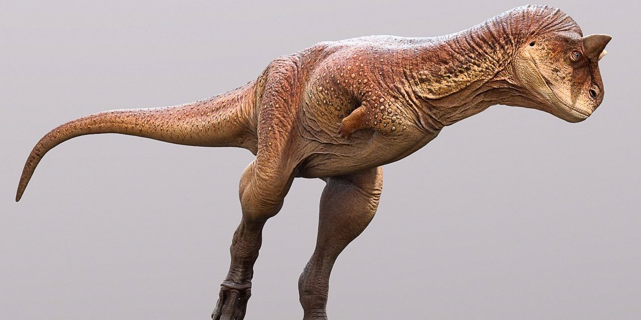 南米の肉食恐竜「カルノタウルス」の皮膚の復元に成功