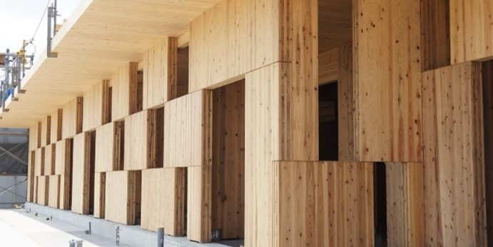 「市松模様の壁」が組み込まれたひまわり幼稚園