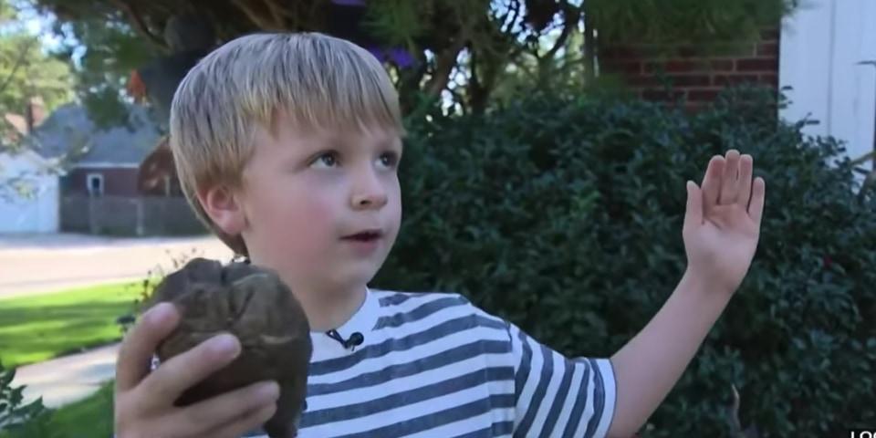 6歳の少年が1万2000年前のマストドンの歯の化石を発見