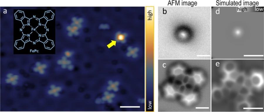 鉄フタロシアニンを走査型トンネル顕微鏡で撮影した画像