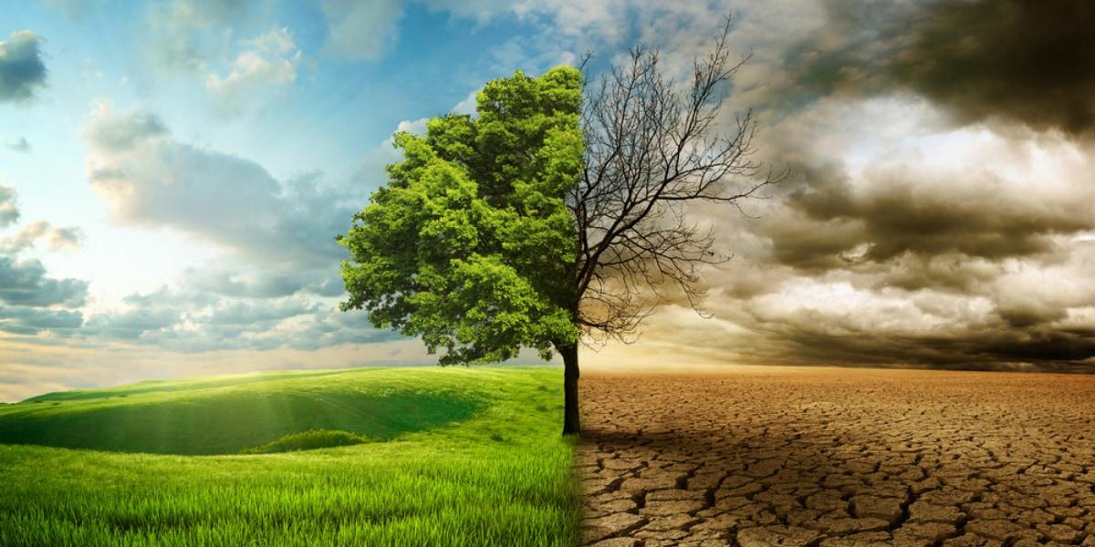 地球温暖化が進んだ未来はどんな景色になっているのか?