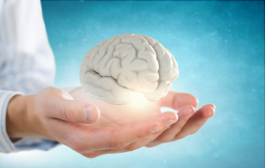 ヒトの脳は「文字の出現」で3000年前から縮小している可能性がある