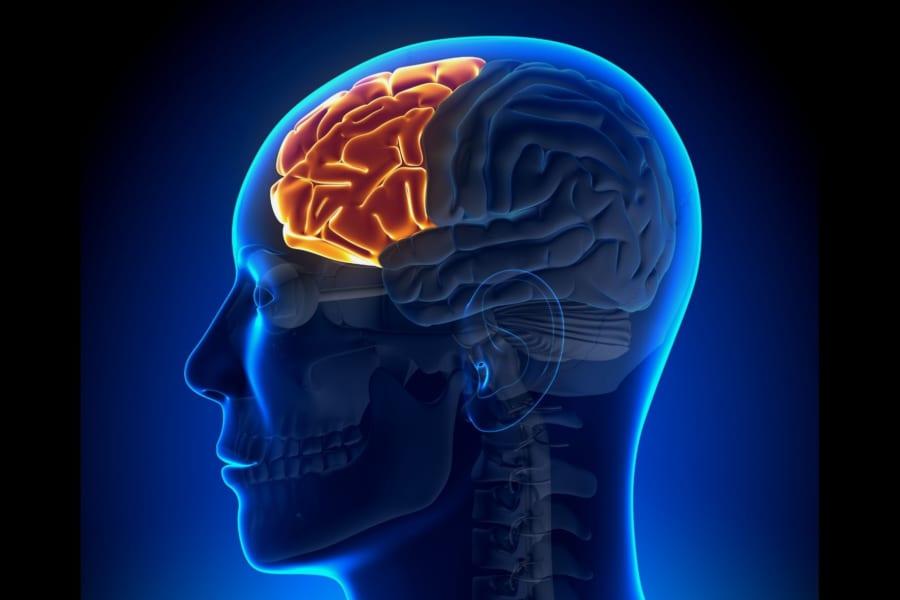 人間性を破壊するロボトミー手術がノーベル賞をとった理由