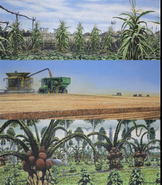 米国中西部を描いたイラスト。上から植民地化以前の時代、現代、未来。