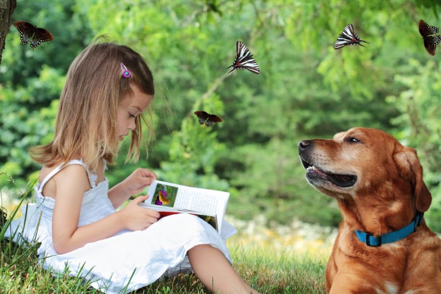 犬に読み聞かせ。新しい教育法「読書犬」がフィンランドで流行中