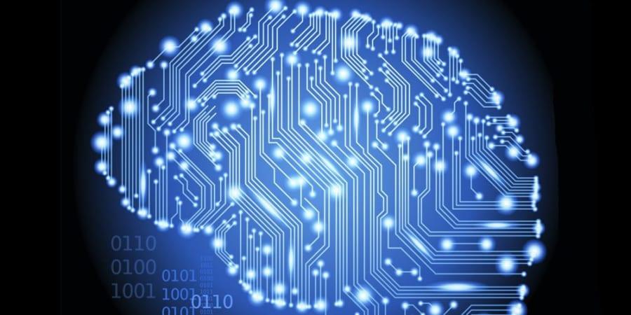 人間の脳、実は量子コンピューターだった? 科学者が本気で実験を開始