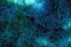 「主観的な時間」に関わる脳の領域が発見されるの画像 2/2