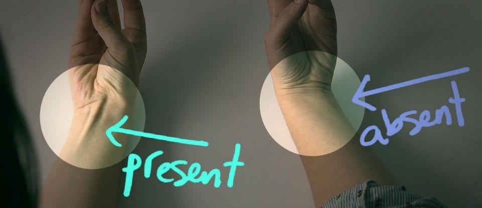 あなたはどっち? 自分の手首で「進化したタイプ」かどうかがわかる