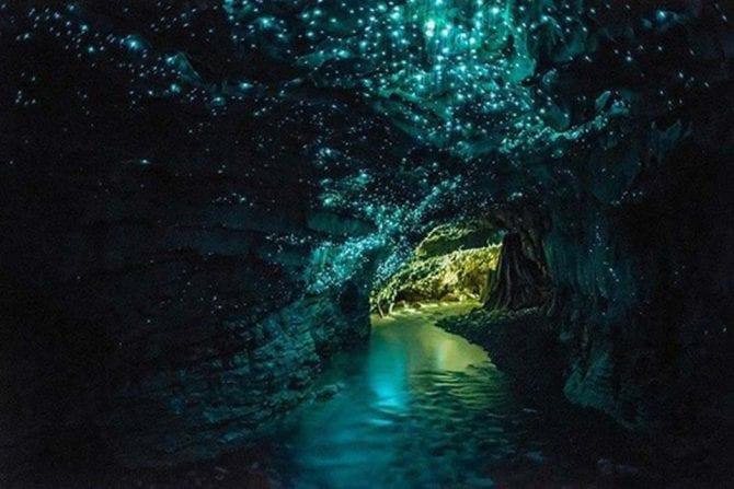「飛行石」のモデル? 青い星空のようなホタルの洞窟