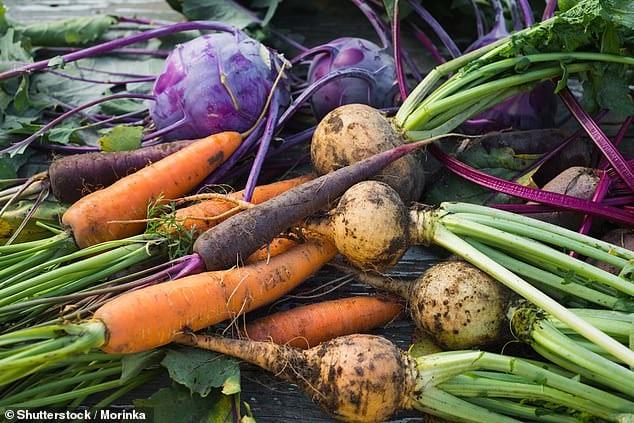 「オーガニック野菜」が地球温暖化に悪影響を与えているかもしれない