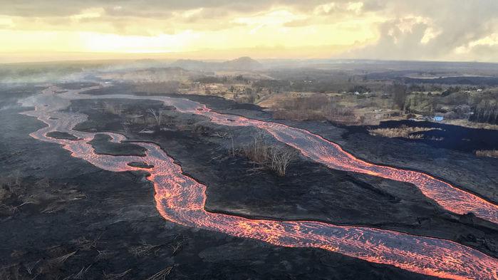 謎が深すぎる。植物すらいないハワイ溶岩で唯一生き延びる「溶岩コオロギ」