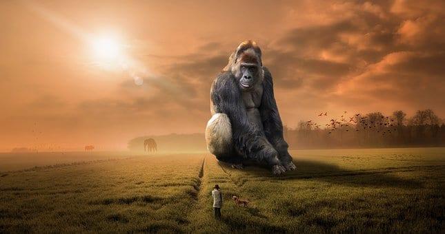 『猿の惑星』が現実に?  中国が「サルの脳」に人間の遺伝子を移植した結果、認知機能が向上したと発表