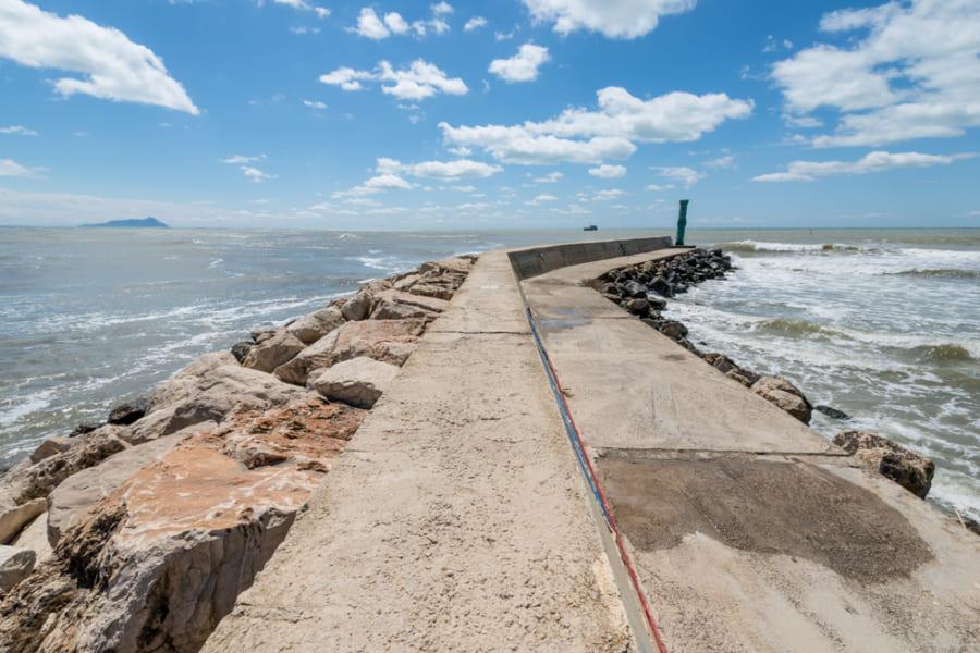 海の「磯臭さ」はどこからくるの? 原因となる細菌は海流に影響されていた