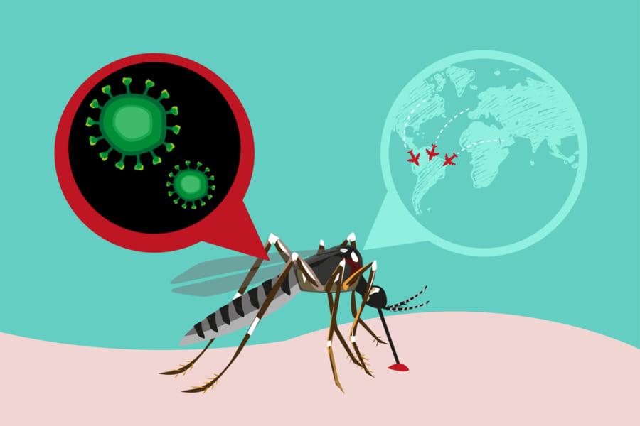 メスの子どもを残せないよう「遺伝子操作された蚊」を放出予定。環境への影響はいかに…