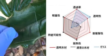 透明木材はガラスよりも高い材料特性をもつ