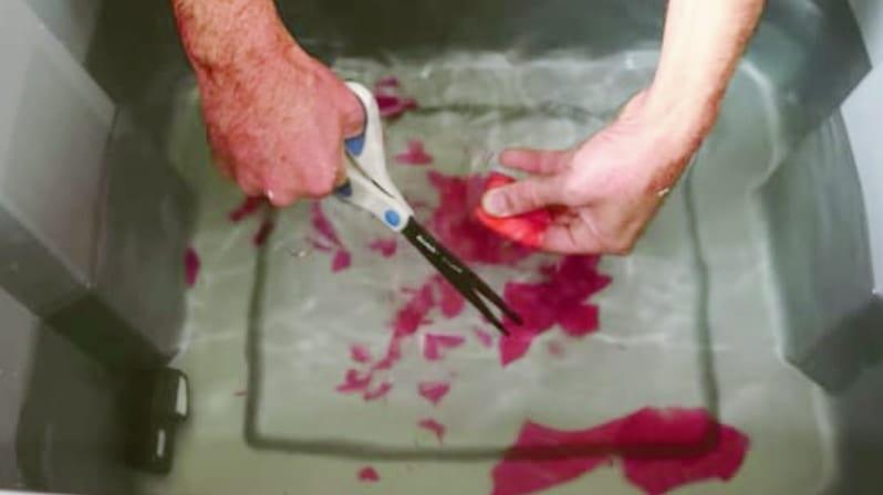 ガラスは水に浸せばハサミで切れる!?自宅でも試せる「ケモメカニカル効果」とは?