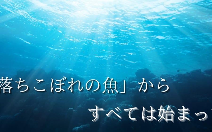 魚はどうやって陸に上がったの?「海の落ちこぼれ」が「陸のヒーロー」になるまで