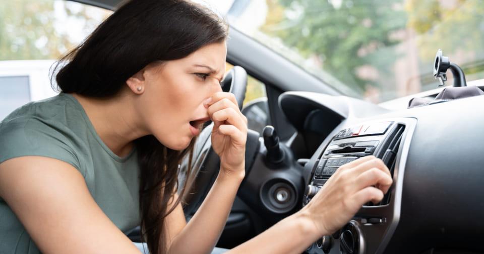 「新車のニオイ」は発がん物質の匂いだった 20分の乗車で許容量を超えてしまう