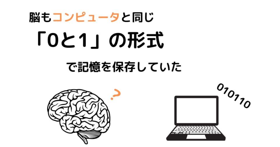 人間の脳は有機スーパーコンピュータだった 「0と1」で記憶を保存すると明らかに (3/17)