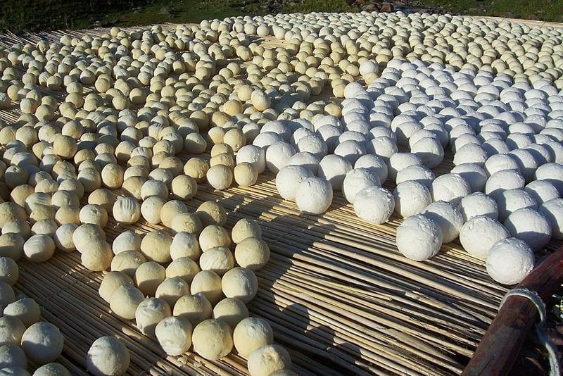 中央アジアの遊牧民が食べてきた「古代の携行食」を再現!