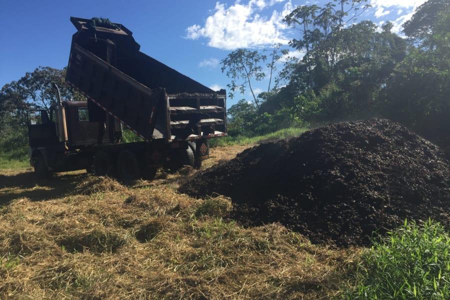 ゴミだった「コーヒーの果肉」が森林再生の「魔法の肥料」となると判明!