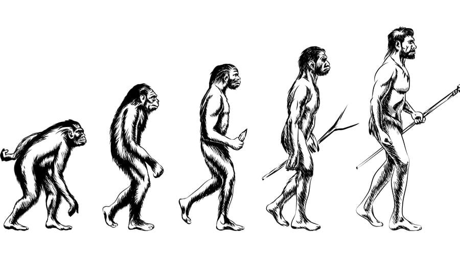 人類は「肉を食べ尽くしたあと」雑食に移行したと判明 200万年間は「肉食」として進化していた