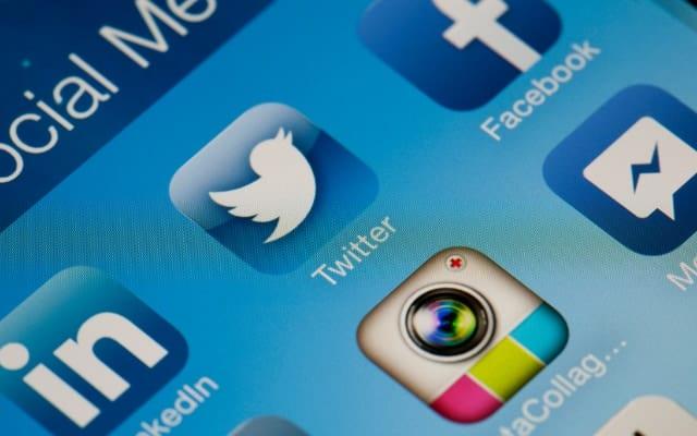 一般人のTwitter写真をきっかけに「新種のダニ」発見、学名に「twitter」