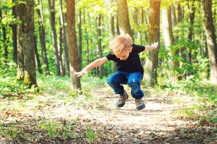 若者は「森林とのふれあい」が多いほど、認知機能が発達すると判明