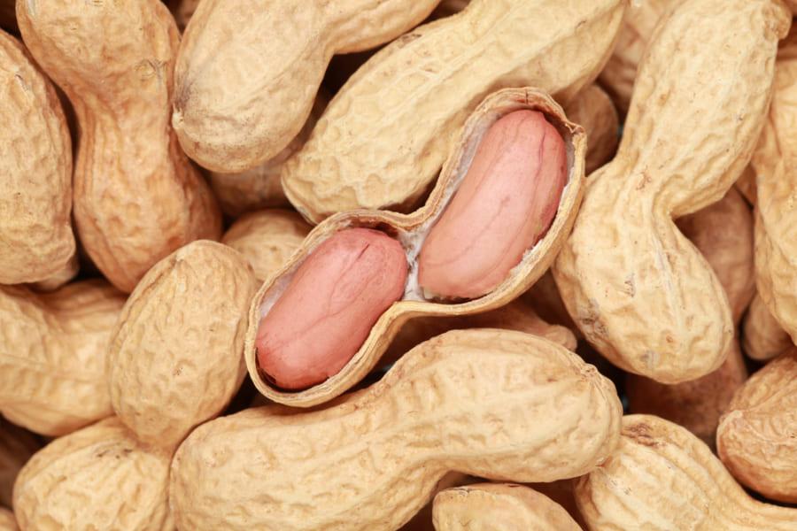1日4〜5個のピーナッツを食べる日本人は「脳卒中・心疾患」の発症リスクが低くなる
